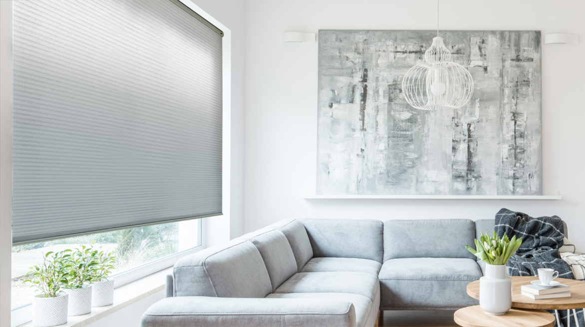 Insulating Whisper Shades situated in living room